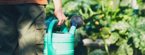 Garten bewässern und gießen