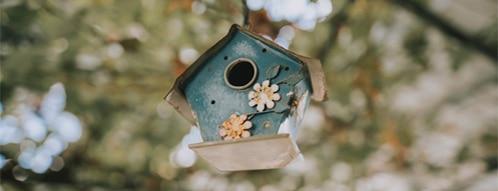 vogelhaus gutscheine - vogelhaus online bestellen geht auch