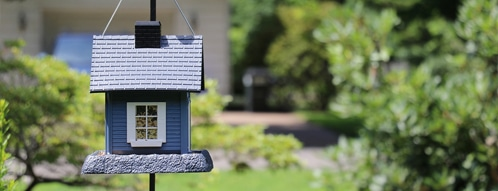vogelhaus gutscheine - vogelhaus online bestellen