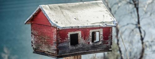 vogelhaus gutscheine - vogelhaus online kaufen uns sparen
