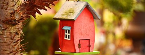 vogelhaus gutscheine - vogelhaus online kaufen